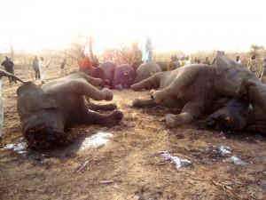 SOS_Elephants_Mars_2013_.2